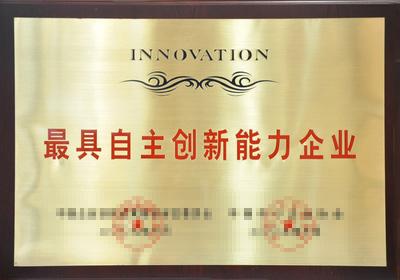 较具自主创新能力企业